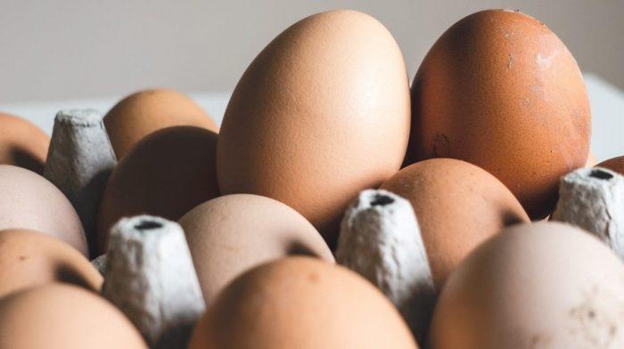 10 Fontes Alimentares Naturais Ricas em Aminoácidos