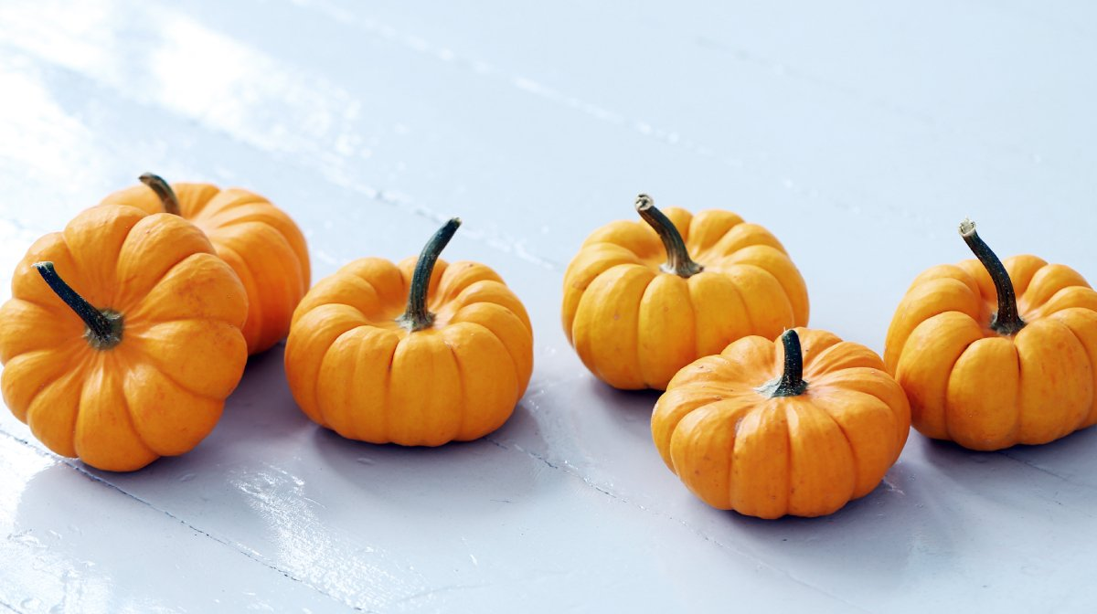 Forget Pumpkin Spiced Lattes, It's All About Pumpkin Infused Beauty Treats
