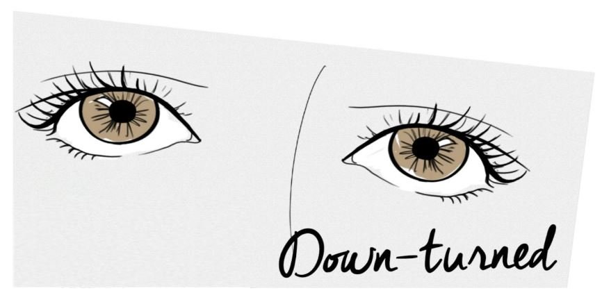 Best lashes for down-turned eyes