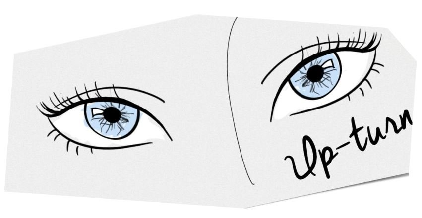 Best lashes for up-turned eyes