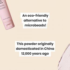 glossybox-skincare-glossy-glossary-rice-powder