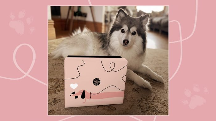 The PAW-some GLOSSYBOX x Glossy Pet Limited Edition! (Whoops, April Fools!)