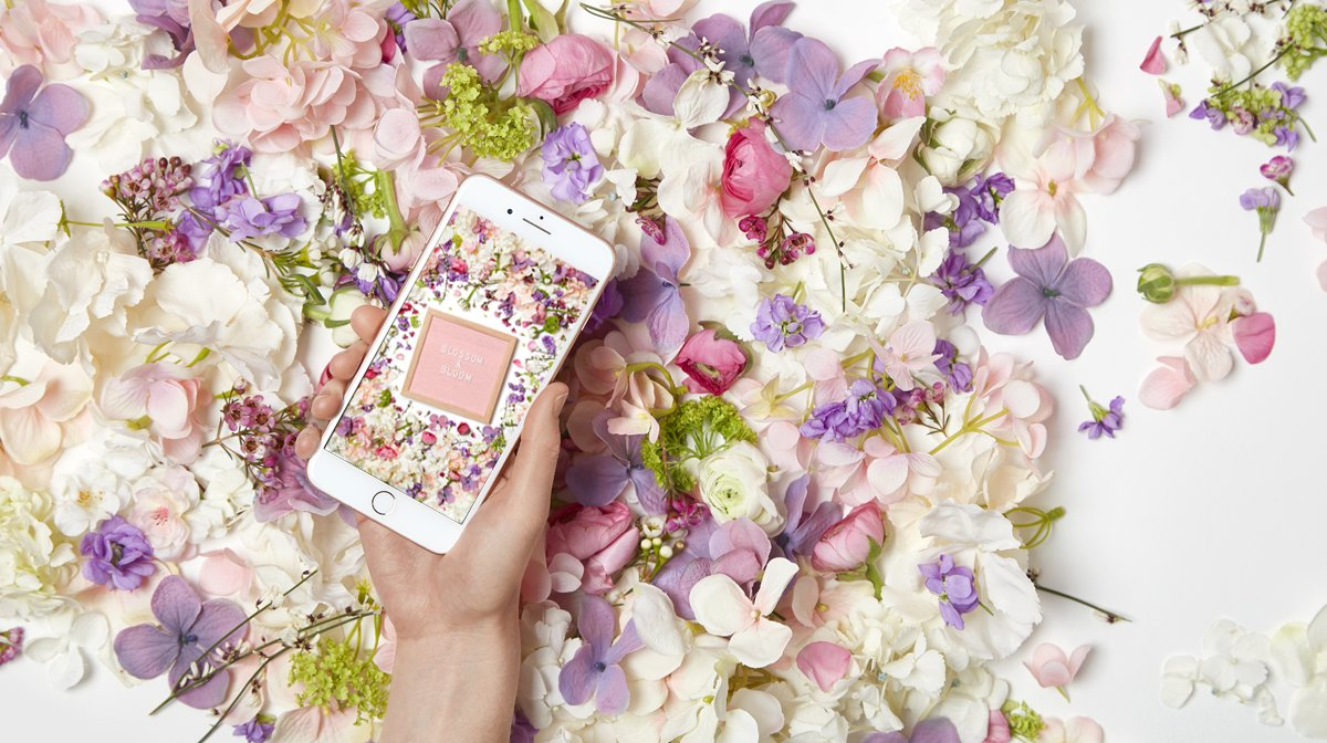 GLOSSY Wallpaper im April: Tauche dein Smartphone und Co in ein Blumenmeer