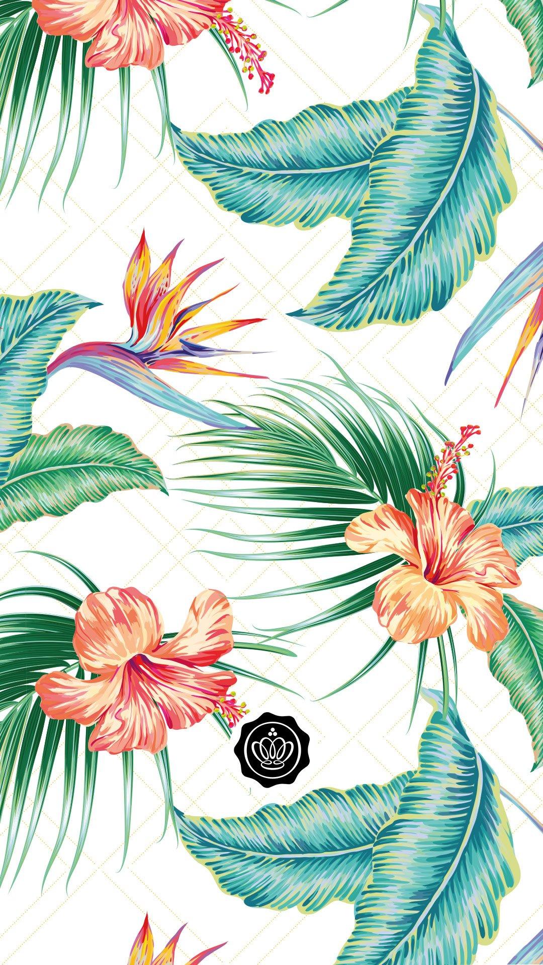 glossy-wallpaper-juli-2020-aloha-glossybox-screensaver