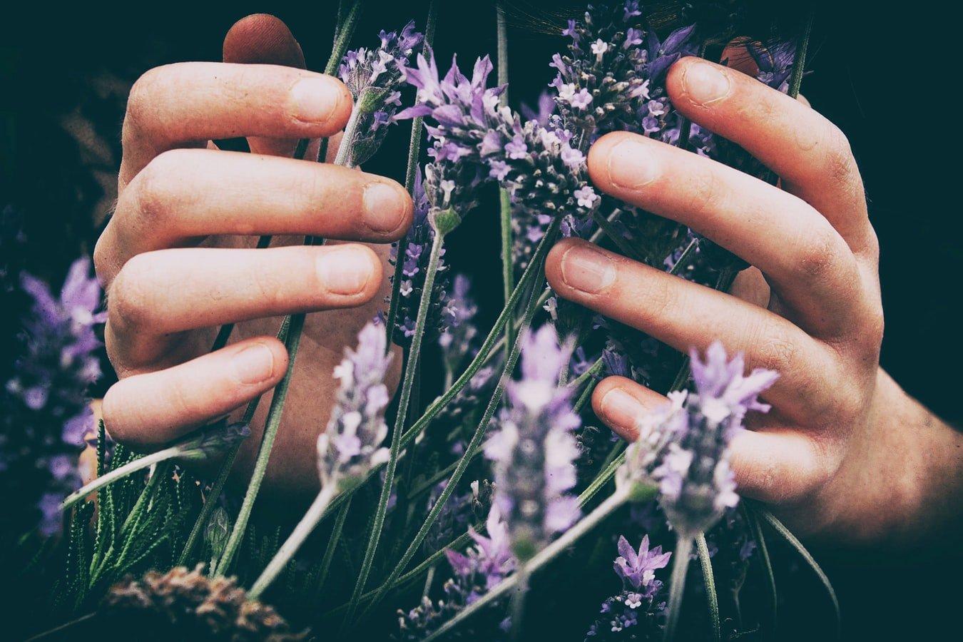 Les 5 huiles essentielles à incorporer dans votre beauty routine