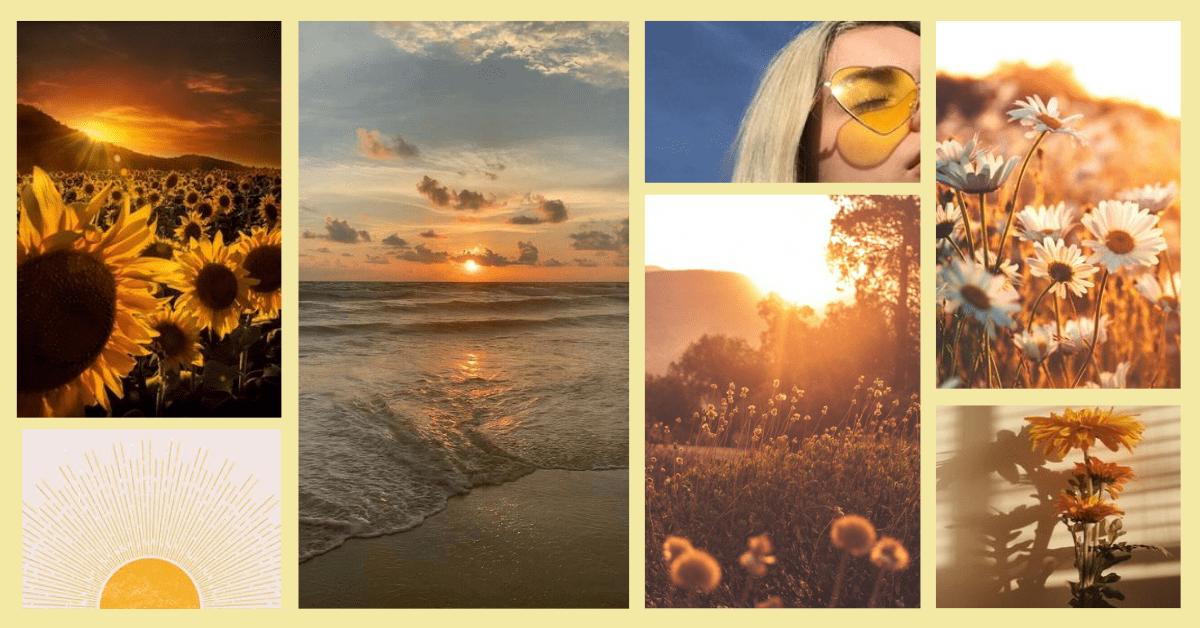 Tout savoir sur le soleil : Version bien-être et beauté