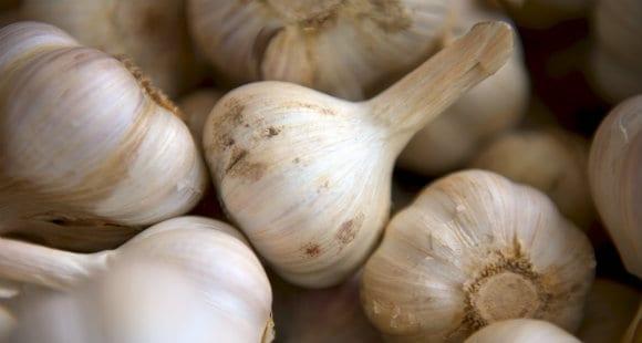 大蒜 大蒜素 大蒜素的功效与作用