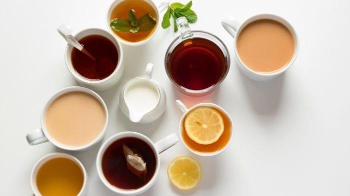 Rooibos Tea 南非有机茶 路易博士茶