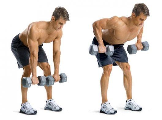 人体学讲解斜方肌 & 如何练斜方肌