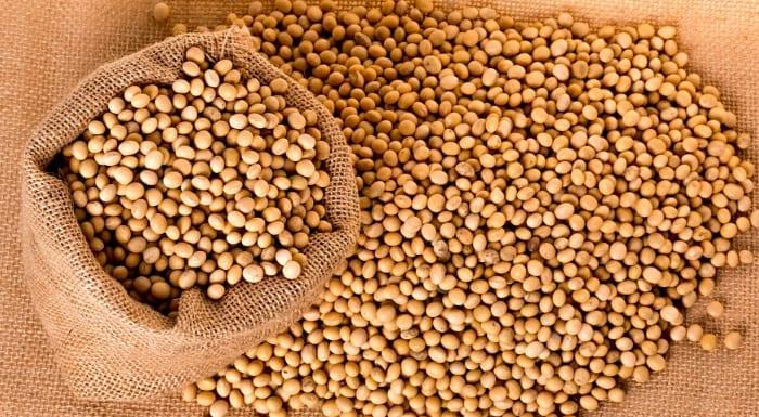 大豆蛋白 大豆蛋白的功效与作用
