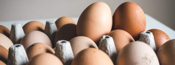 Czym jest dieta jajeczna?