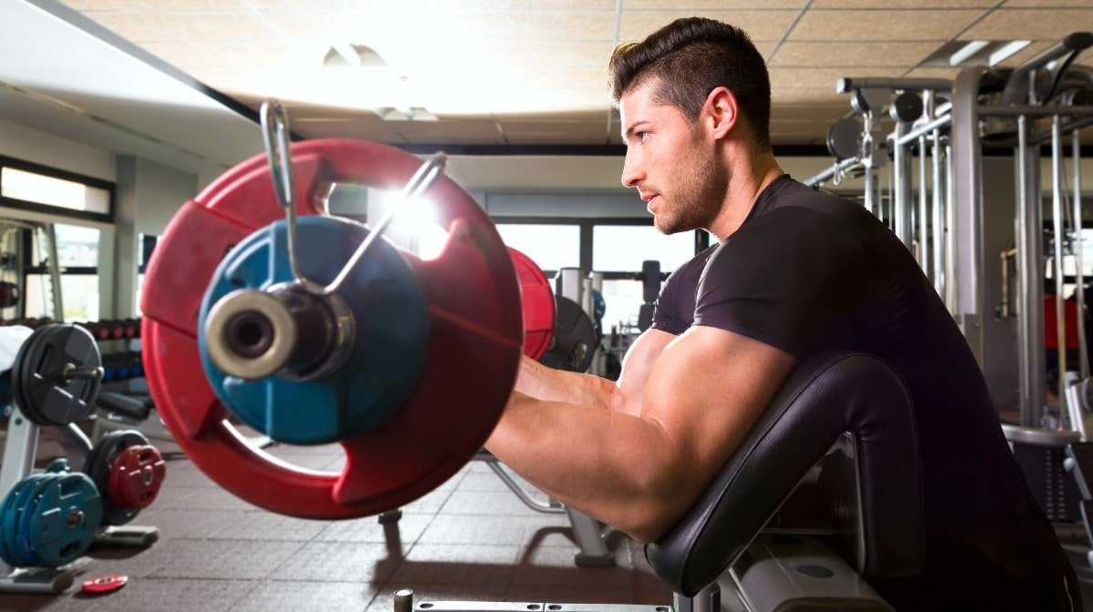 How To Perform The Concentration Curl
