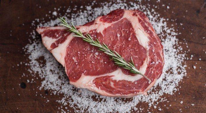 carnivore diéta (mäsová diéta)