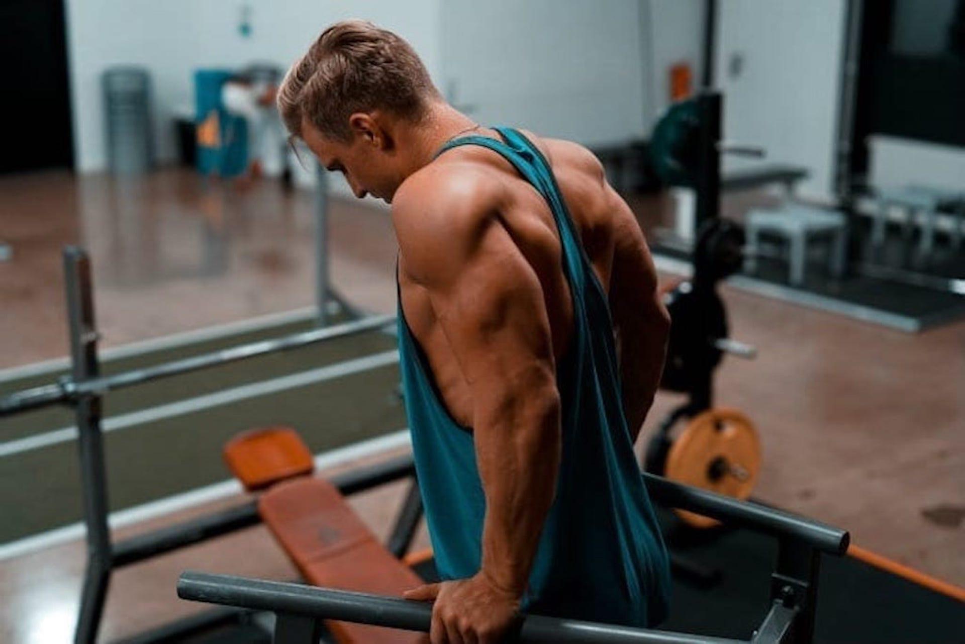 Utveckla armens baksida |  Övningar för triceps långa huvud