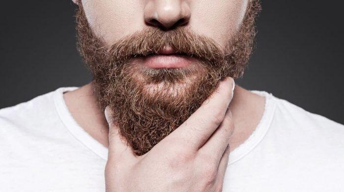 The Beard Care Bible