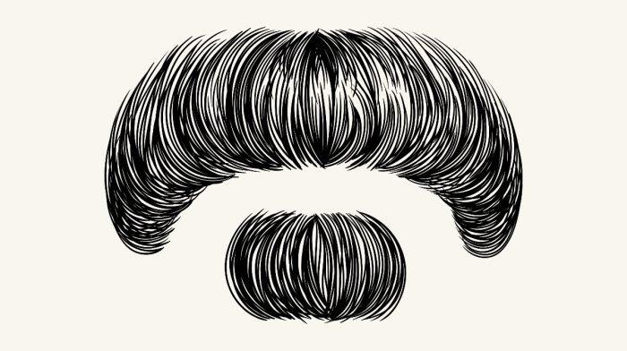 The Zappa Beard: as rebellious as its namesake