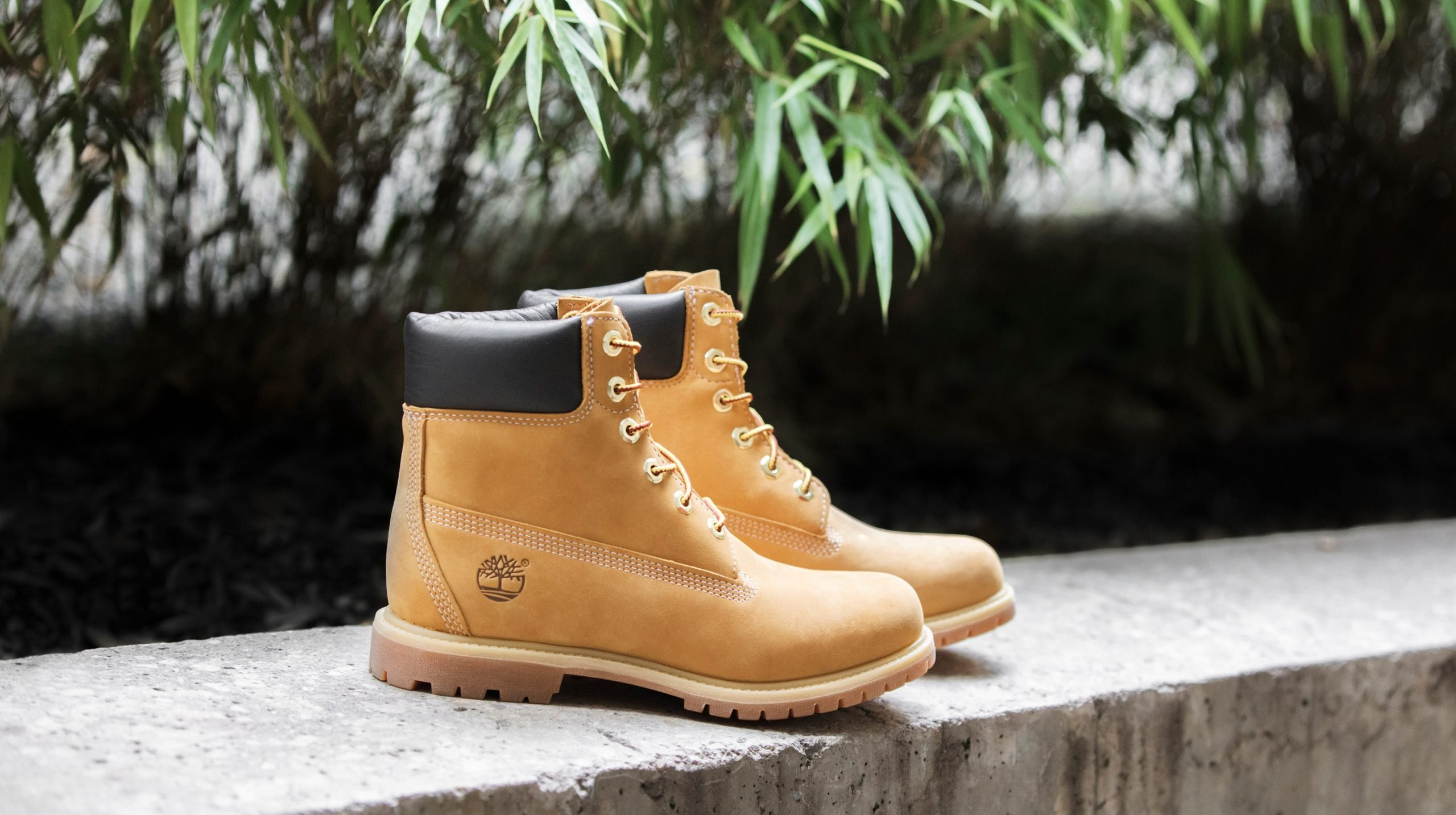 tos Perezoso Ardilla  Timberland Fit, Care And Size Guide | Buyers Guide - AllSole