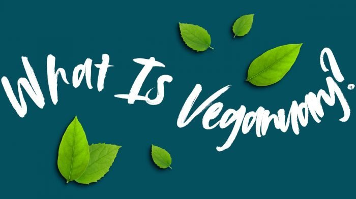 What is Veganuary? | Guide to Veganuary 2021 with Myvegan