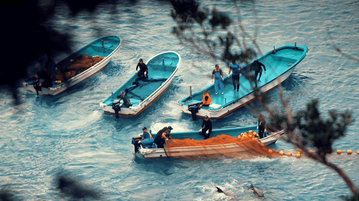 5 Key Takeaways From Seaspiracy