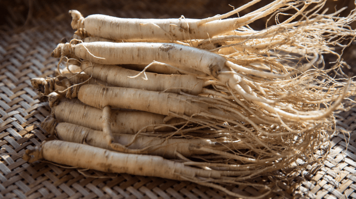 Panax Ginseng | What Are The Benefits?