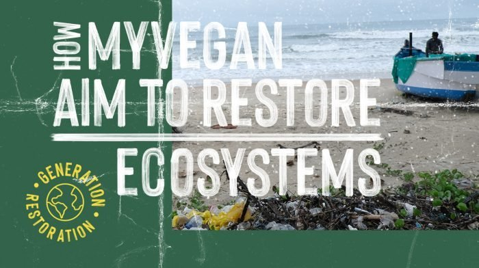How Myvegan Aim to Restore Ecosystems