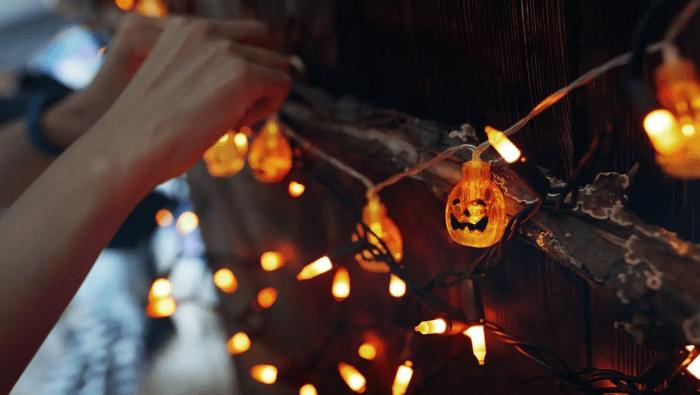Eco-Friendly Halloween   Myvegan