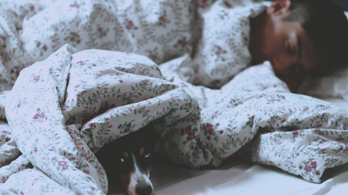 Wohlbefinden zu Hause: Gewohnte Routinen pflegen wie Aufstehen und Schlafen gehen zu einer bestimmten Uhrzeit