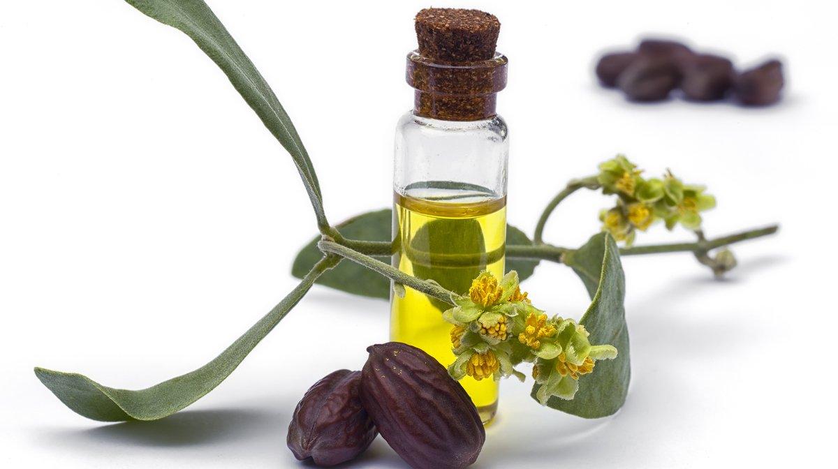 Jojoba-Öl: ideal für empfindliche Haut & Bärte | Gillette DE