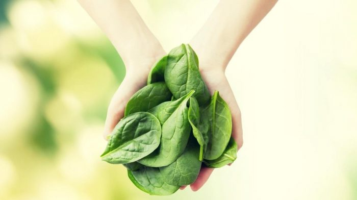 Why Magnesium is Key to Good Health