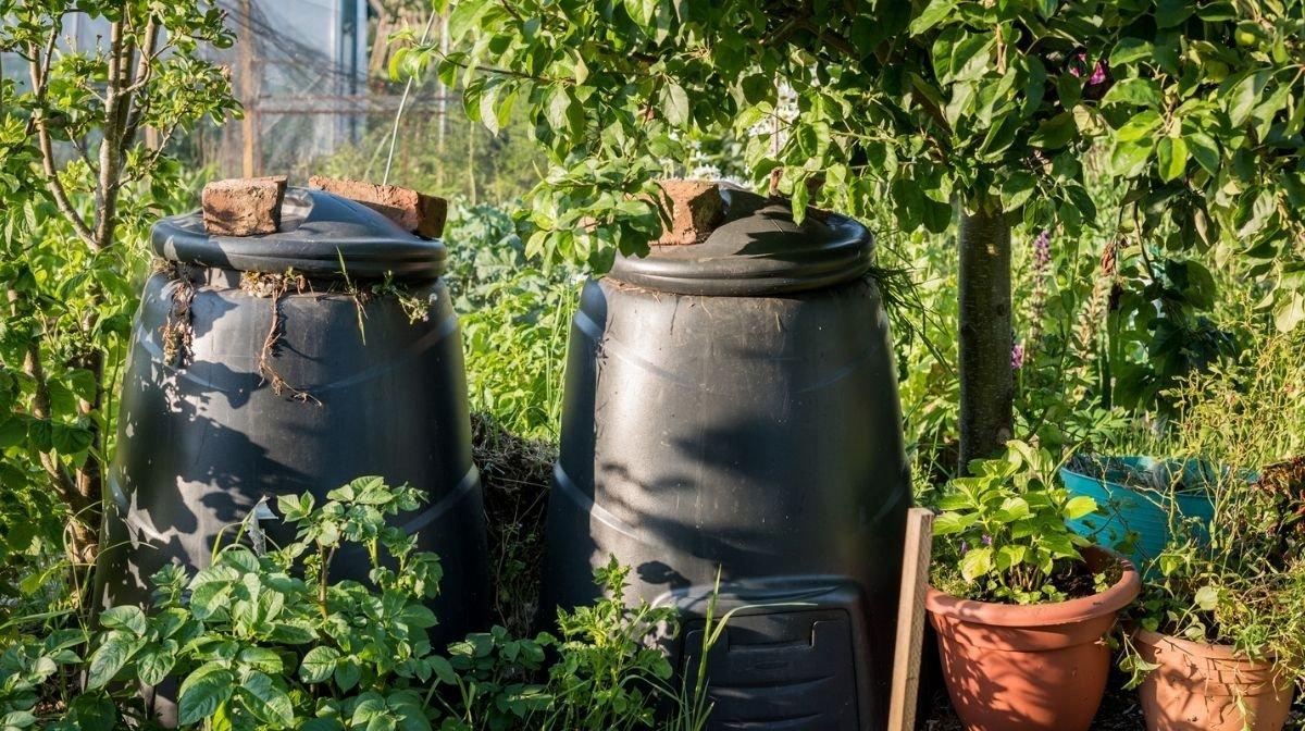 compost bins in a garden