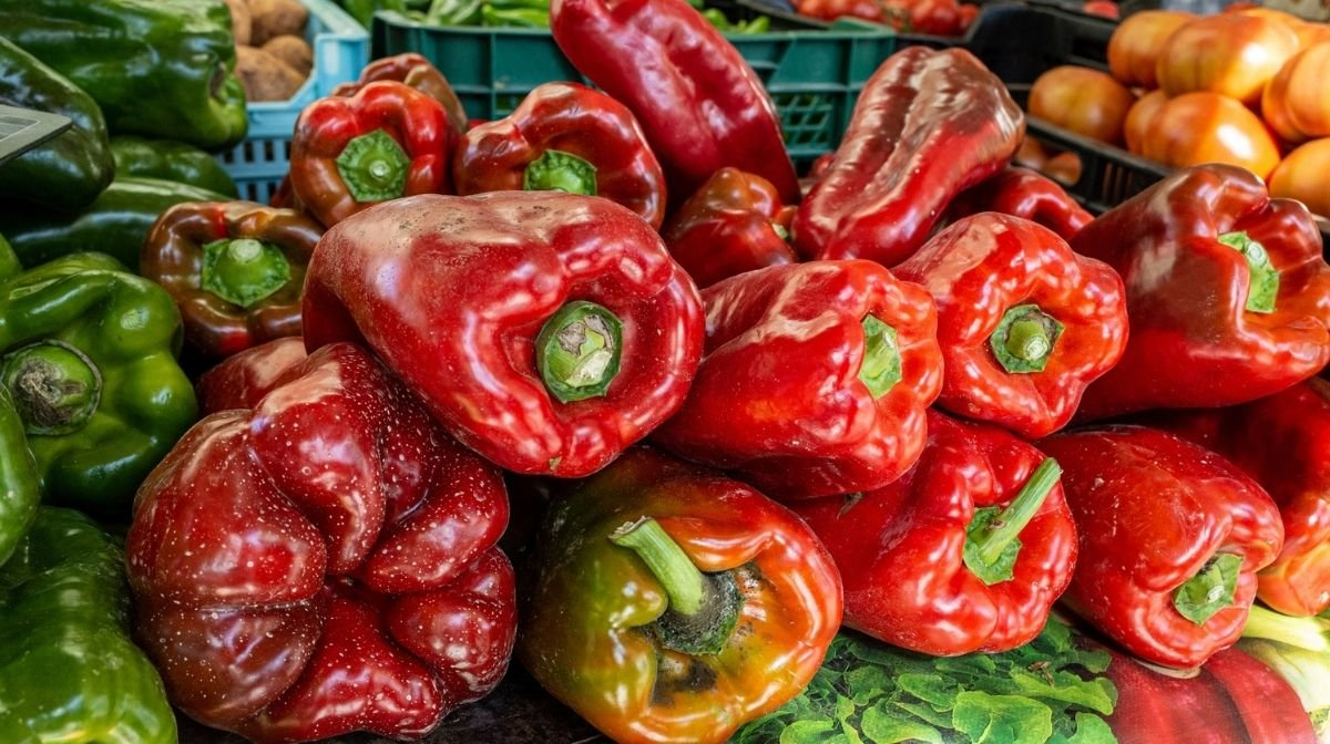 pile of peppers and other vegetables