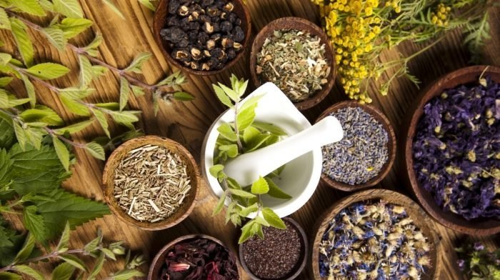 The Garden of Life Guide to Herbal Remedies