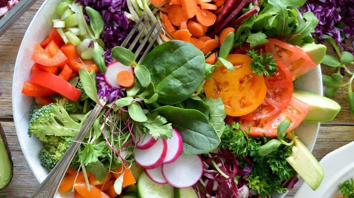 Kuri dieta – geriausia? Populiariausių dietų palyginimas