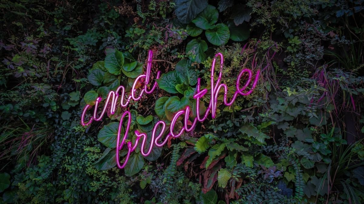 Focusing on your breathing is a key part of meditation.