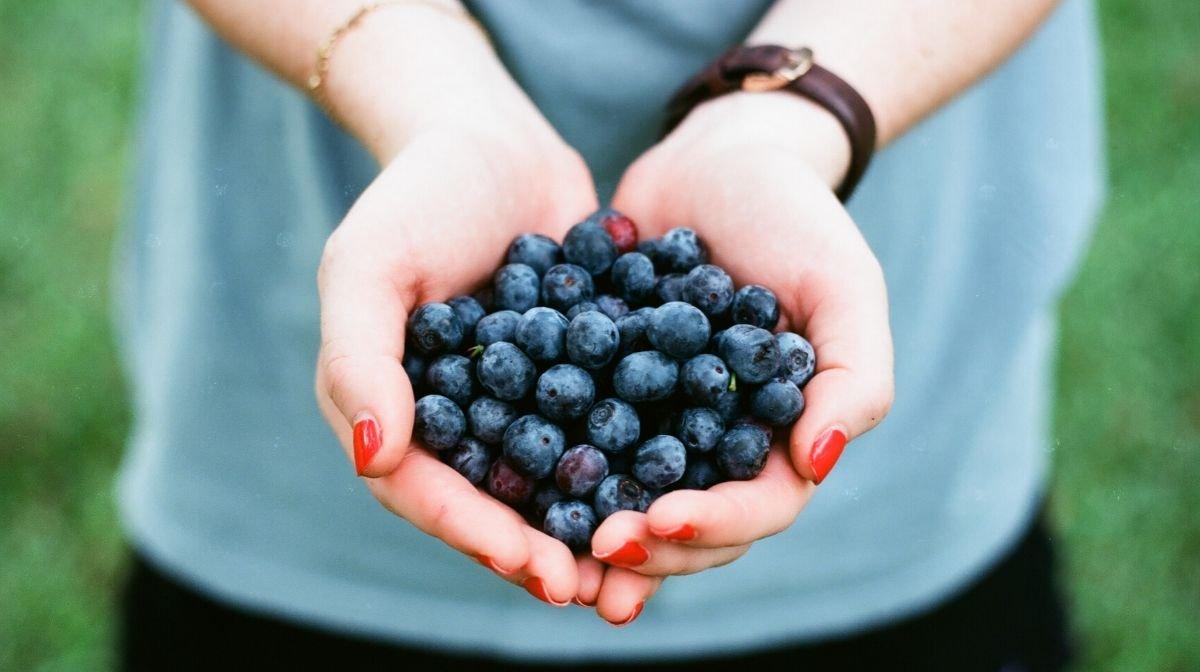 Les aliments bio sont-ils vraiment meilleurs pour la santé ?