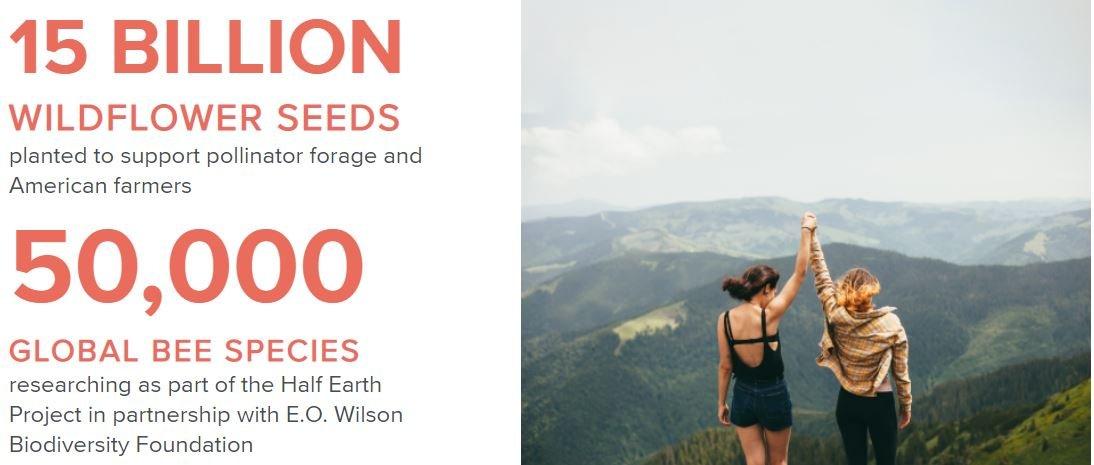 Burt's Bees have planted 15 billion wildflower seeds throughout 2020
