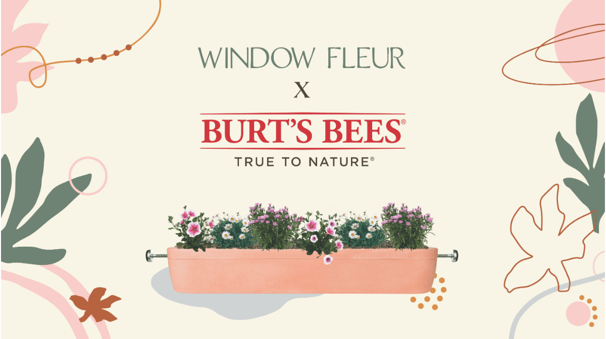 Our Partnership with Window Fleur