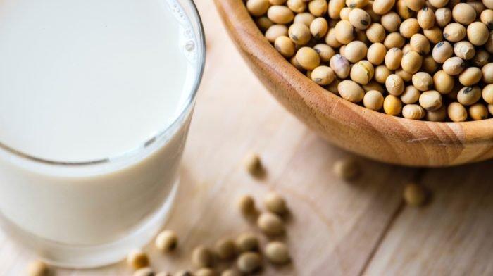Rostlinný protein vs. syrovátkový Whey | Je Whey Protein veganský?