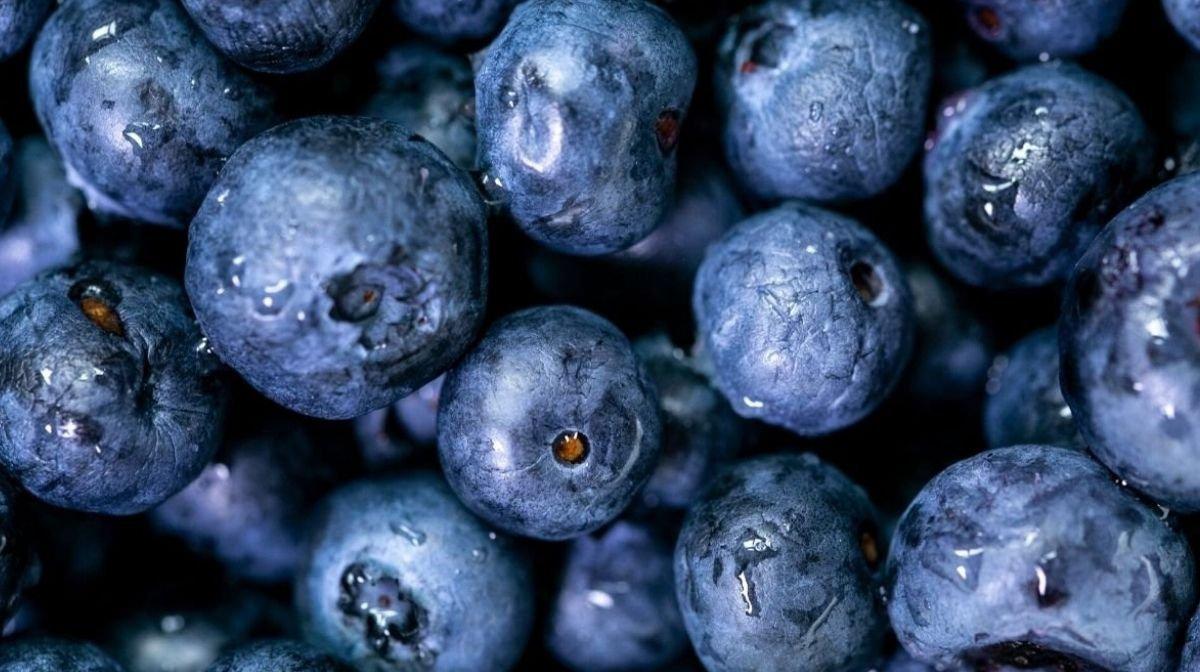 Cosa sono gli antiossidanti e perché sono importanti per la salute?