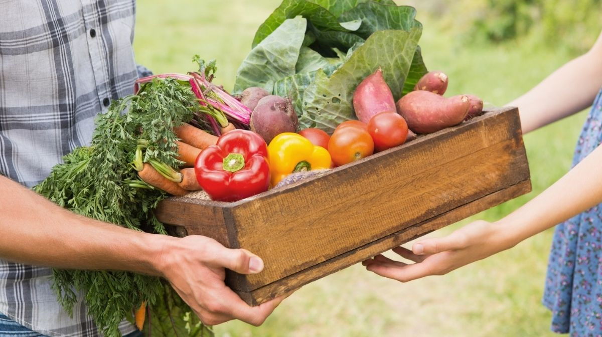 What You Can Do About Food Waste