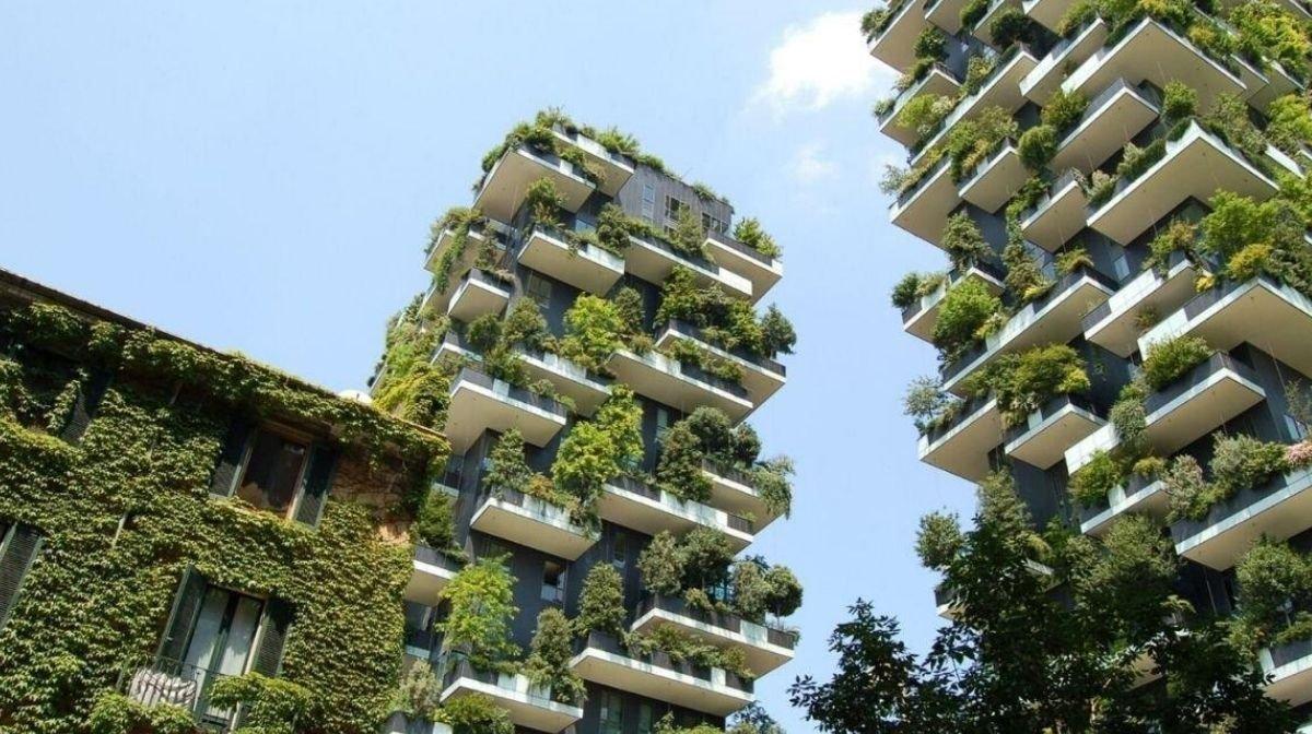 Un deseo de reducir el impacto medioambiental