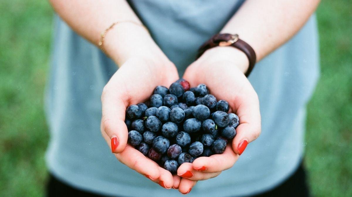 ¿La comida orgánica es mejor para mí?