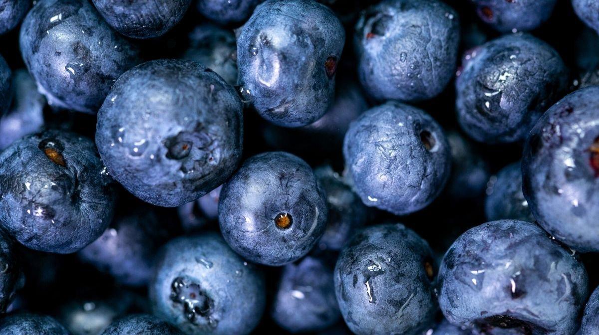 ¿Qué son los antioxidantes? ¿Para qué sirven?