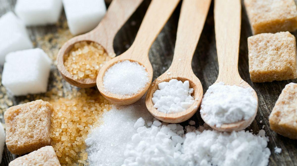 Zucker – Energielieferant oder Ursache für Übergewicht?