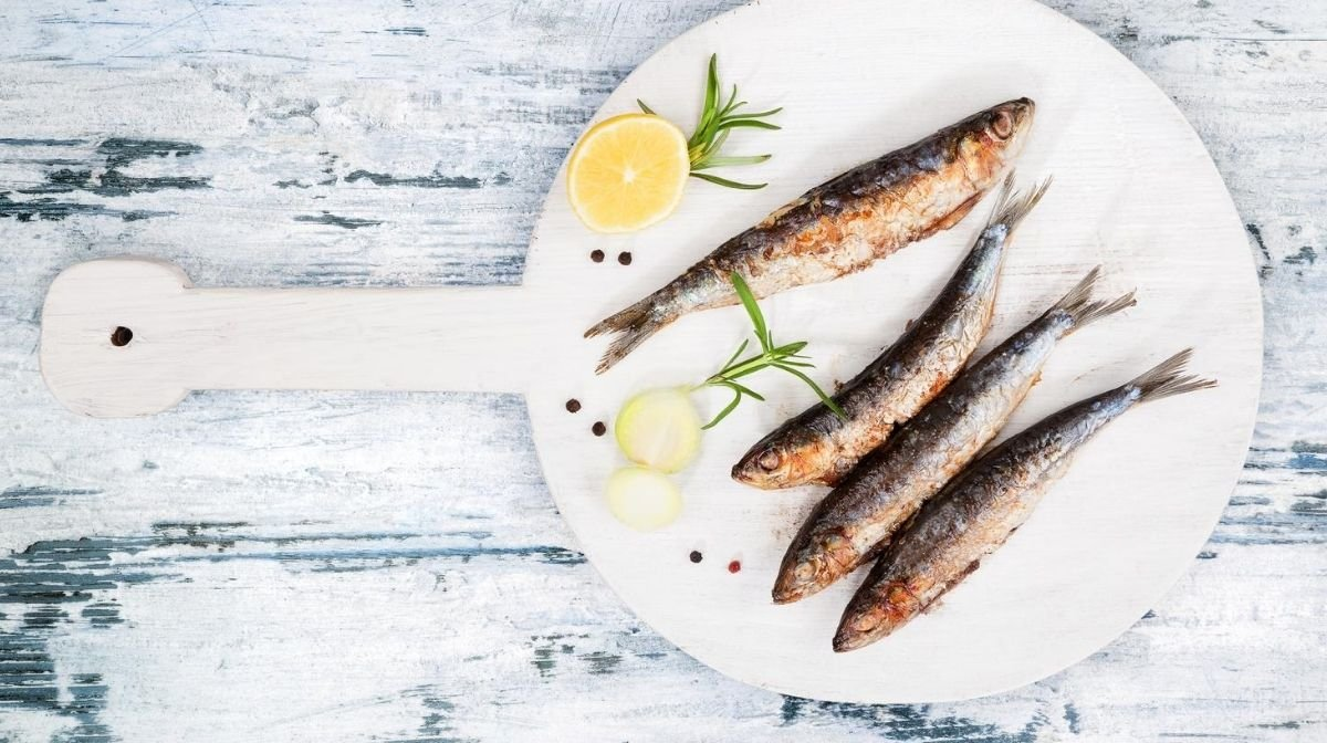 Why We Source Fish Oil from Anchovies, Sardines and Mackerel