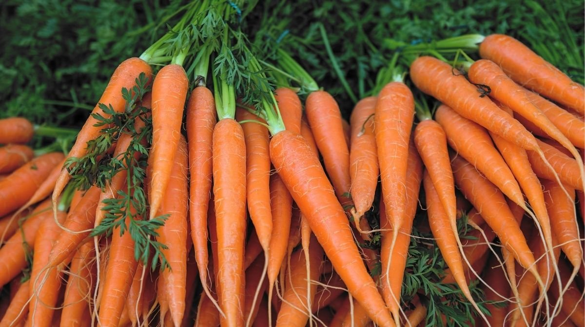 fresh carrots, a natural source of vitamin A