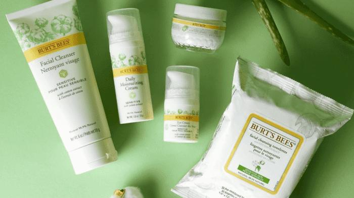Die Vorteile von Aloe vera für deine Haut