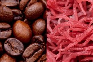 coffee beans and red algae