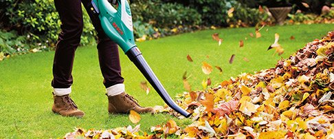 how to maintain your lawn in autumn