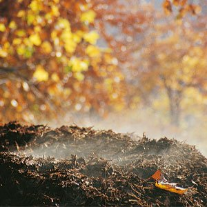 make your own compost 300x300 image
